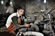 استان زنجان- بیش از ۹۵ درصد کودکان کار دارای خانواده هستند