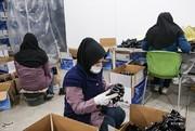 البرز | زمینه اشتغال 700 زن سرپرست خانوار در البرز فراهم شد
