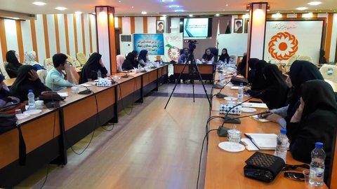 بوشهر|کارگاه آموزشی تامین مالی خرد در برنامه CBR
