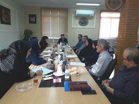 گیلان | نشست تخصصی مدیرکل بهزیستی گیلان با معاونت هماهنگی موسسات غیردولتی و مشارکت های مردمی و اشتغال