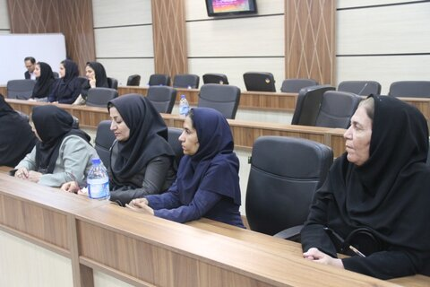 جلسه رییس سازمان بهزیستی کشور با نمایندگان سازمان های مردم نهاد استان فارس