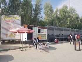 فیلم/کلیپ فعالیتهای بهزیستی ایلام در مرز مهران اربعین 98