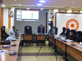 نشست توجیهی برنامه ملی پیشگیری از تنبلی چشم در بوشهر برگزار شد