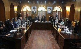 نشست هم اندیشی سرپرست اداره کل بهزیستی استان با اعضای شورای اسلامی شهر بوشهر برگزار شد