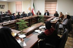 جلسه بررسی چالشها و موانع پیش روی مراکز غیردولتی با حضور مشاور رئیس سازمان بهزیستی کشور در امور معلولین برگزار شد