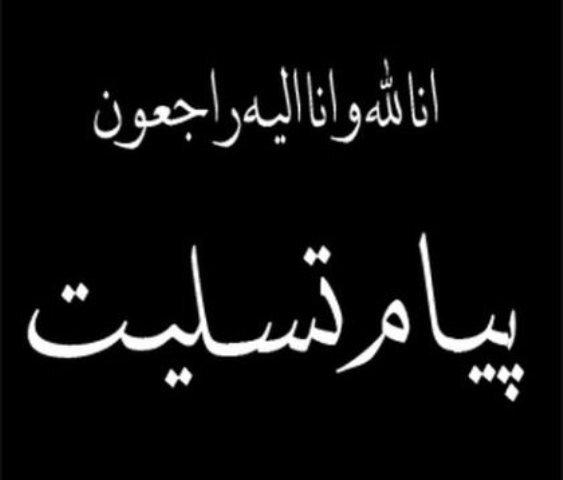 پیام تسلیت رییس سازمان بهزیستی کشور در پی جانباختن تعدادی از هموطنان مان در سانحه سقوط هواپیما