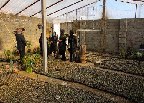 بازدید دکتر حیدری از پروژه پرورش کاکتوس خانواده دارای دو عضو معلول شهرستان ساوجبلاغ