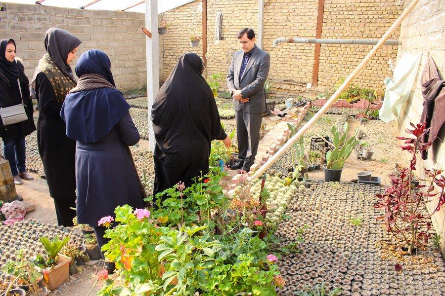 گزارش تصویری   بازدید دکتر حیدری از پروژه پرورش کاکتوس خانواده دارای دو عضو معلول شهرستان ساوجبلاغ