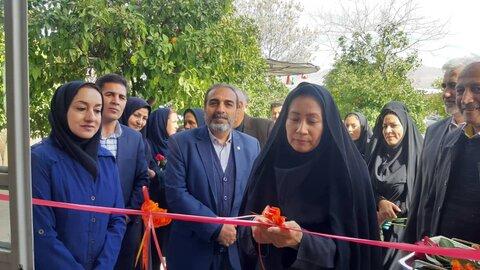 افتتاح دو طرح اشتغالزایی   ویژه جامعه هدف بهزیستی فارس به مناسبت دهه فجر
