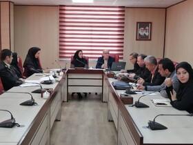 """جلسه مشورتی """"طرح ارزیابی سریع و پاسخگویی به وضعیت کودکان کار و خیابان"""" برگزار شد"""