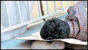 طرح پیشگیری و مراقبت از شیوع بیماری کرونا در افراد بی خانمان، آغاز شد