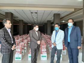 آغاز توزیع یک هزار بسته مواد غذایی بین خانواده های تحت حمایت بهزیستی عنبرآباد