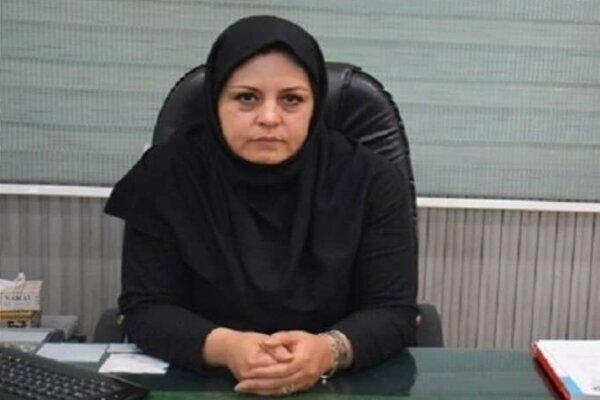شمیرانات  آشیانه تنها  عمده مشکل سالمندان شمال تهران است