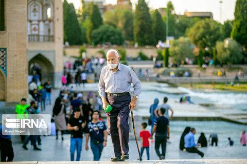 سند ملی سالمندان در مسیر نهایی شدن و ابلاغ