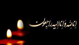 پیام تسلیت رئیس سازمان بهزیستی کشور برای درگذشت همکار این سازمان در استان کرمانشاه