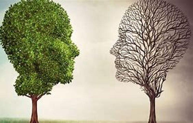 تأثیر جدی سازمانهای مردم نهاد در ارتقای شاخصهای سلامت روان