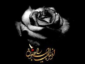 پیام تسلیت رئیس سازمان بهزیستی کشور در پی درگذشت همکاراین سازمان در استان البرز