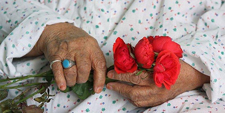 در رسانه  چند درصد سالمندان تنها زندگی می کنند؟/ جمعیت آذربایجان از هر چهار نفر یک نفر سالمند