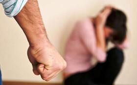 سازمان بهزیستی آماده خدمت به زنان آسیب دیده خشونت های خانگی است