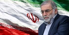 تسلیت مدیرکل بهزیستی استان به مناسبت شهادت «محسن فخری زاده»