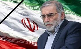 پیام مدیرکل بهزیستی استان خوزستان در پی  شهادت دکتر محسن فخری زاده