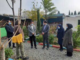 گزارش تصویری | بازدید میدانی دکتر نظم ده و دکتر حیدری از کمپ های ترک اعتیاد استان البرز